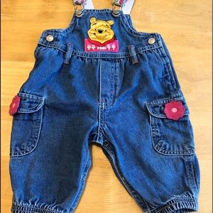 Pooh 100 Acre Collection